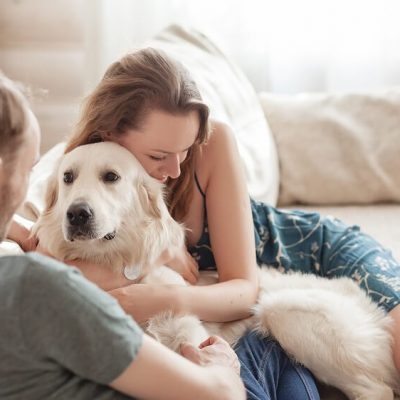 rules on owning pets in strata